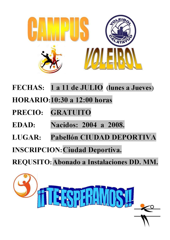 Voleibol2019