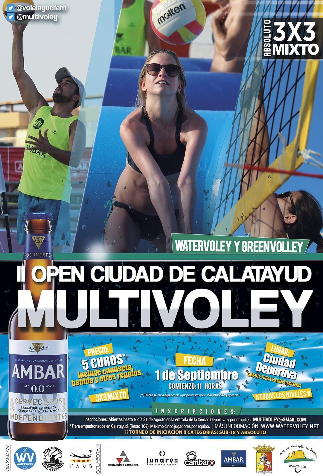 OpenVoley20191080