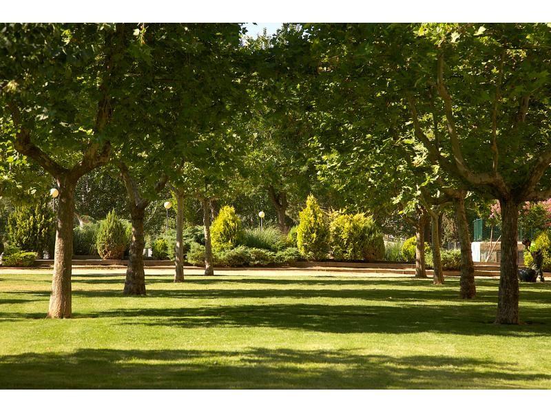 Parques y jardines de calatayud for Parques y jardines