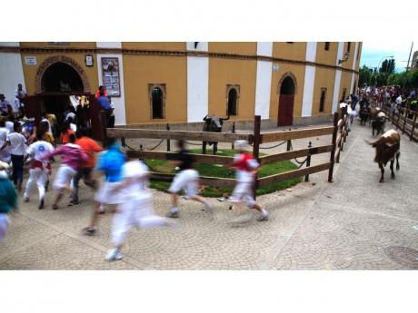Encierros de San Roque