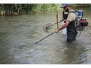 El Gobierno de Aragón evalúa la fauna del río Jalón a su paso por Calatayud