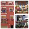 Más de 1.000 personas eligen los balcones mejor decorados de Calatayud