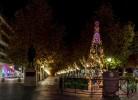 Los bilbilitanos colocarán su deseo en el árbol de la AECC el próximo miércoles día 18