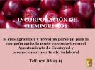 El Ayuntamiento unifica la oferta agrícola para facilitar la incorporación de temporeros