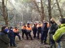 El Taller de Empleo se ocupa de la repoblación forestal del barranco de Soria
